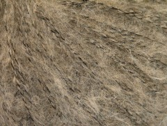 Freddy vlna - světle velbloudí 1