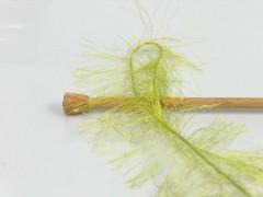Long Eylash - jablíčkově zelená