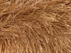 Long Eylash - světle hnědá