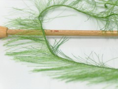Long Eylash - zelená 1